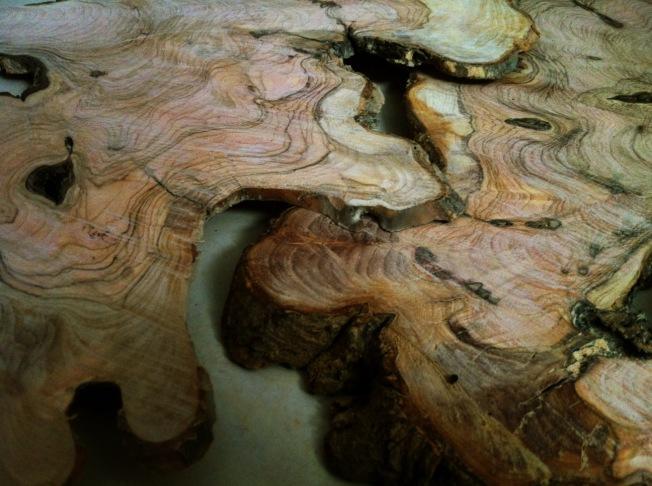 פרוסות עץ זית