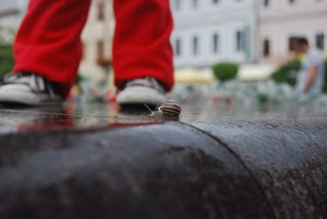 צולם במדרחוב שבעיר Banská Bystrica